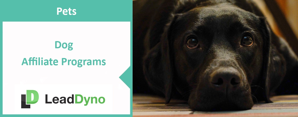 LeadDyno Product Guide to Dog Affiliate Programs