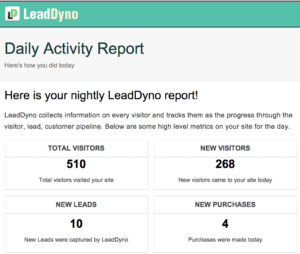 LeadDyno Affiliate Program Activity Report