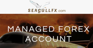 SeagullFX - The best affiliate products to promote - Finance programs