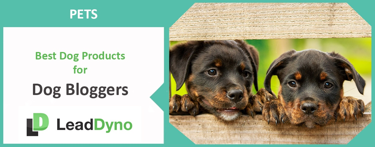 Best Dog Products | Dog Bloggers | LeadDyno