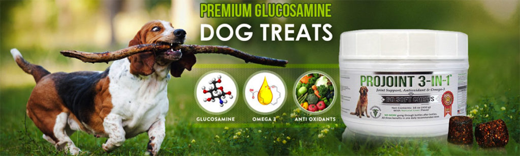 Premium Glucosamine Dog Treats