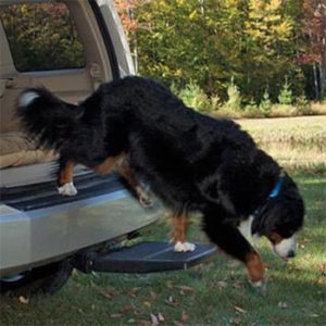 Dog Vehicle Step