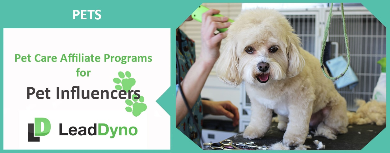 Pet Care Affiliate Programs | LeadDyno Recommendations