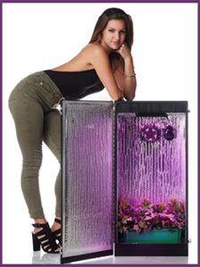 Hydroponics Grow Box by Dealzer