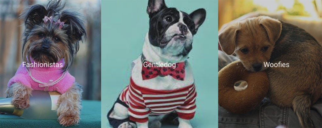Pets Fashion | Clothing & Accessories