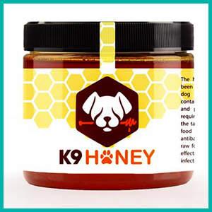 Healthy Honey Tasty Treats for Dogs