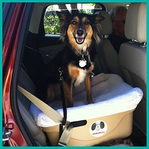 Comfy + Safe Car Seat for Dogs